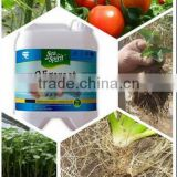 Amino acids,Alginic acid, Mannitol, Calcium(Ca)Liquid soluble fertilizer