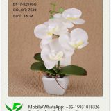 18cm Mini Artificial Orchid in Ceramic Pot