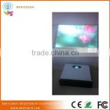 30 inch Interactive Holo Terminal with Touch Function , Touch Screen Glass Kiosk Terminal