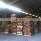 Acacia wood sawn timber for pallet or finger joint