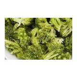 Natural Green Freeze Dried Vegetables Bulk Broccoli Florets for Vegetable Dishes