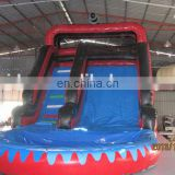2015 lastest style beautiful inflatable water slide with pool WS060