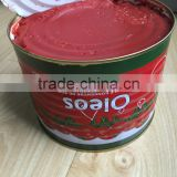 hot selling africa halal food red color natural tomato paste
