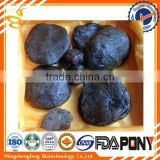 raw propolis/100% pure propolis from Chinese ,manufactory