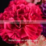 Red Artificial Carnation Flower Head Silk For Sale