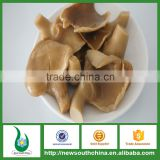 High quality 3 years self life frozen canne abalone mushroom in brine