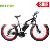 26 inch Aluminium Alloy Unique Design CE Certificate Brushelss Motor Electric Fat Tire Ebike