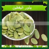 New Arrival Pumpkin Seeds Kernels Big Quantity
