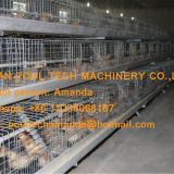 Oman Chicken Farming Day Old Chick Cage & A Frame Automatic Small Chicken Cage & Poultry Farm Equipment with Drinking & Feeding System for Baby Chick