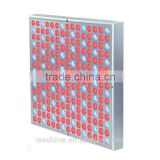 global e grow co ltd Surface Square 45W efficiency LED Growing Light commercial hydroponic systems garden bloom panel