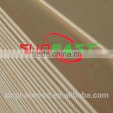 Linyi Suneast high quality 18mm birch core film faced plywood Chinese shuttering plywood