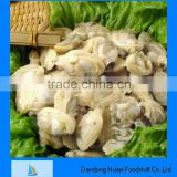 frozen short necked clam seafood shellfish clam