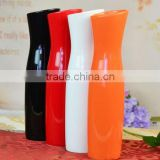 Fashion vases wholesale /Porcelain Vases/flower vase ceramic