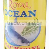 OEM canned mackerel fish in tin