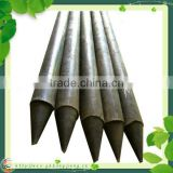 decorative plant stakes
