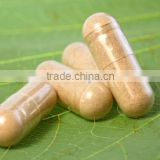 Best Quality Supplement Female Enhancement Pills