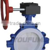 Lug type butterfly Valve lined PTFE Manual