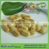 GMP Certified contract manufacturer/Private label Vitamin C 500mg Capsules time Release oem