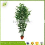 combined wholesale indoor landscape bamboo bonsai tree