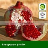 Pomegranate leaf extract powder in bulk