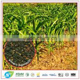 Organic chemical fertilizer for substitute urea Premium grade applying from Thailand 5-5-5 OM10%