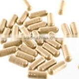 GMPc Echinacea Golden Seal Root Herbal Supplement