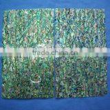 painted colourful abalone/paue shell paper sheet