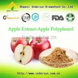 High quality natural 100% apple cider vinegar extract