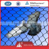 38g per square meter UV treated HDPE multifilament knotless netting for Vineyard bird netting, anti bird net, PE bird net