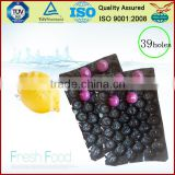 Canada Popular Wholesale Greenhouse Agriculture Products Packaging Plastic Tomato Tray