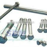 Decorative Nut and Bolt (various types, common sizes and grades, accept special requirements)
