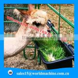 hydroponic sheep fodder machines is benificial to both poultry & livestock