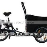 danish family cheap 3 wheel tricycle electric cargo bike/cargobike price/kids tricycle