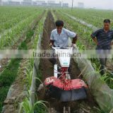 biggest sugarcane planting area brazil hot sale cane sugar cultivator much workers saving