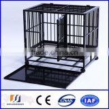 China factory direct dog cage / dog kennel (factory)