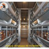 Ghana Poultry Farm & Chicken Farm Battery Chicken Cage & Layer Cage & Chicken Coop & Hen Coop & Laying Hen Cage in Poultry House