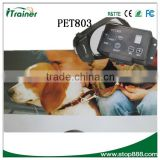 Popular Smart Wires Dog Fence Training with Pet Electric Collars PET803