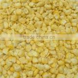 Supply fozen dried sweet corn with good quality with good quality for sale