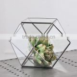 Hanging geometric glass terrarium, glass globe hanging terrarium