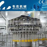 The leading manufacturer of automatic pineapple juice processing machine(fruit juice plant)