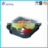 Food storage PET material transparent plastic lunch boxes with lid