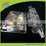 OUCHEN wholesale high quality plastic quail egg cartons container 12 18 20 24 30 holes for sale