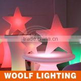 Outdoor and Indoor Star Shape LED Christmas Decor Lamp