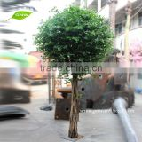 BTR012 GNW minitype artificial ficus microcarpa trees for wedding decoration