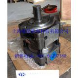 QT62-100-BP Internal Gear Pump