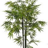 new product artificial bonsai bamboo tree with natural colour