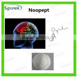 SG hight quality Noopept powder //GVS-111//CAS:157115-85-0