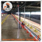 Salvador Poultry Farming Equipment Broiler Floor Raising System & Chicken Deep Litter System with Automatic Drinking& Feeding System in Chicken Coop