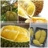 TASTY - FROZEN DURIAN MEAT - PULP WITH SEED