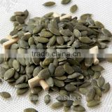 Xuanda Pumpkin Seed Kernels grow without shell in bulk quantity with lowest price